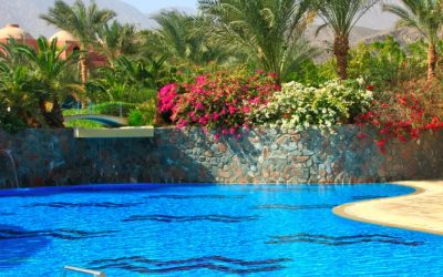How to choose a pool builder for your project